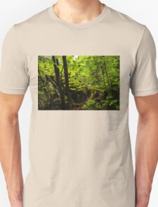 Sunlight in the Forest  T-Shirt