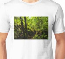 Sunlight in the Forest  Unisex T-Shirt