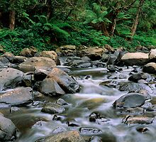 Aire River Cascades by Allan Savage