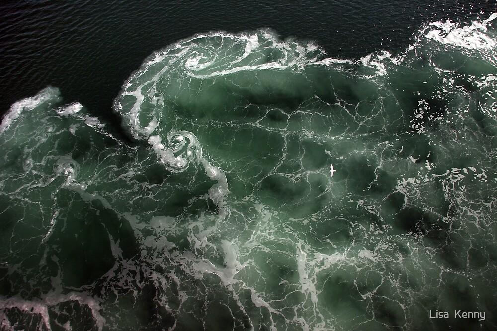 Turbulence - A birds eye view by Lisa  Kenny