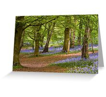 Bluebell Woods in Spring Greeting Card