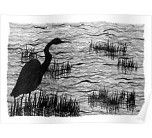 The Waterbird Poster