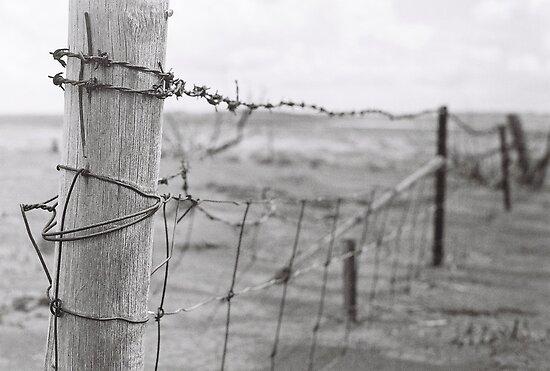 Fence by Mattahorne