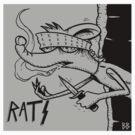 RATS  by eyespyeye