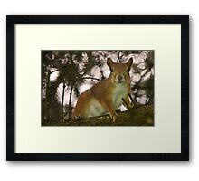 Red Squirrel Mom Framed Print