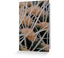 Prickles of a cactus Greeting Card