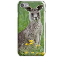 Hip hop through the daisies  iPhone Case/Skin