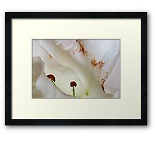 Whos looking at u Framed Print