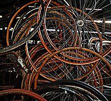 Wheels Wheels Wheels by Rebecca Bryson