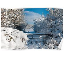 Winter Countryside with Snow Poster