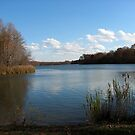 Lums Pond by brucecasale