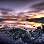Clyde Sunrise by Ward McNeill