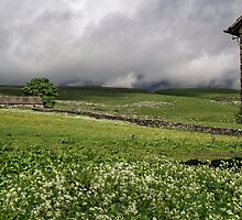Dales Barns near Malhamdale by Nick Jenkins
