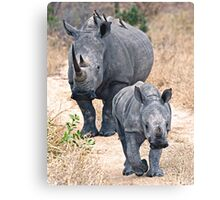 The Rhino Walk Canvas Print