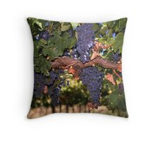 Cabernet ready for Harvest Throw Pillow