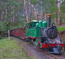 Little Green Steam Machine by mspfoto