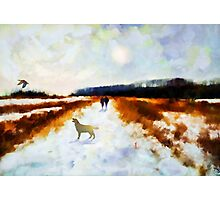 Broadland walk'... Photographic Print
