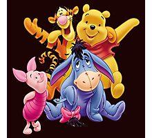 Winnie the Pooh Photographic Print