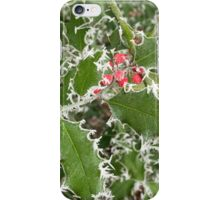 Frosty Holly in winter iPhone Case/Skin