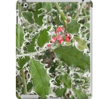 Frosty Holly in winter iPad Case/Skin