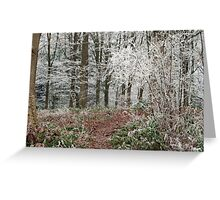 Winter Woodland Greeting Card
