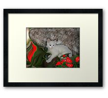My Precious Little Gift From Heaven Framed Print