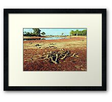 Drought 2008 Framed Print