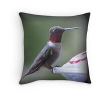 """Ruby Throated Hummingbird In The Rain"" Throw Pillow"