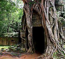 The Rooted Door of Ta Som - Angkor, Cambodia. by Tiffany Lenoir