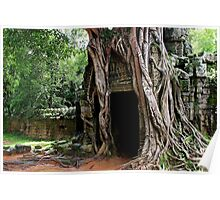 The Rooted Door of Ta Som - Angkor, Cambodia. Poster