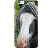 Heavy Horse Close Up iPhone Case/Skin