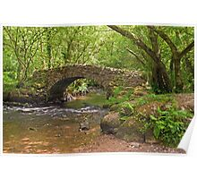 Hisley Packhorse Bridge Dartmoor Poster
