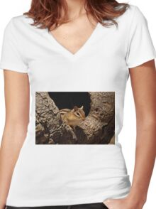 Chipmunk in tree hole - Ottawa, Ontario Women's Fitted V-Neck T-Shirt