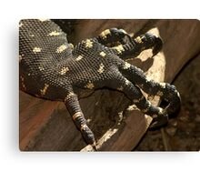 Claw Foot Canvas Print