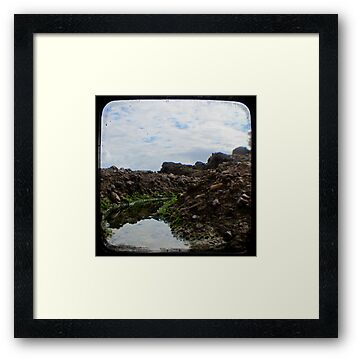 Rockpool - Through The Viewfinder (TTV) #2 by Kitsmumma