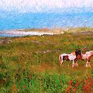 Irish Ponies by bhutch7