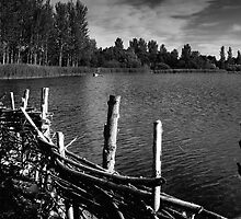 Lakeside Monochrome - Willen, Milton Keynes by Nick Bland