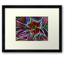 Multi - Colored Lily Framed Print