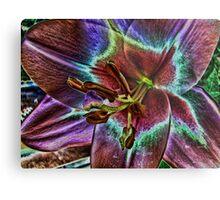 Multi - Colored Lily Metal Print