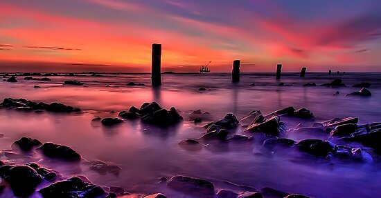 Silent Seascape by Shannon Rogers