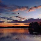 English Lakeside Sunset - Caldecotte, Buckinghamshire by Nick Bland