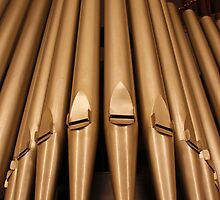 Pipe Organ by LauraBroussard
