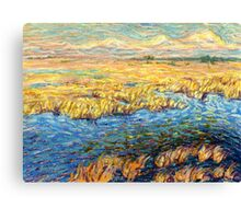 Marshland in early spring Canvas Print