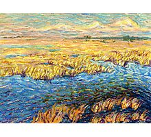 Marshland in early spring Photographic Print