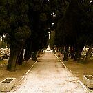 Cemetery path by Richard Pitman