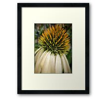 The Leading Light! Framed Print