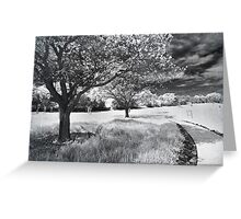 Still the Road Leads Back to You Greeting Card