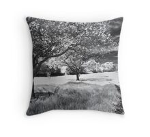 Still the Road Leads Back to You Throw Pillow