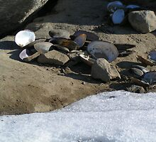Now, That's A Lot Of Clams! by WhoDini