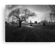 """Frosty Winter Park in Black and White """"Simply Stated"""" Canvas Print"""